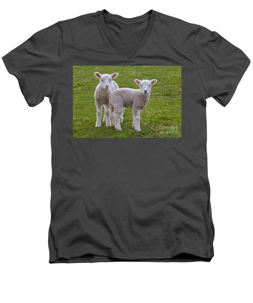 Men's V-Neck T-Shirt featuring the photograph 130201p091 by Arterra Picture Library