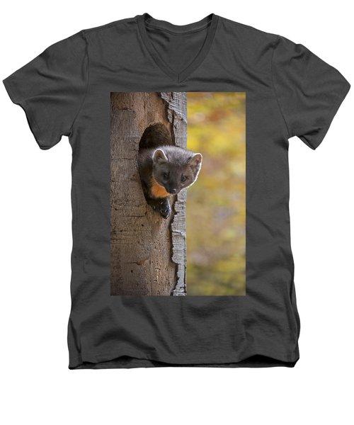 131114p020 Men's V-Neck T-Shirt
