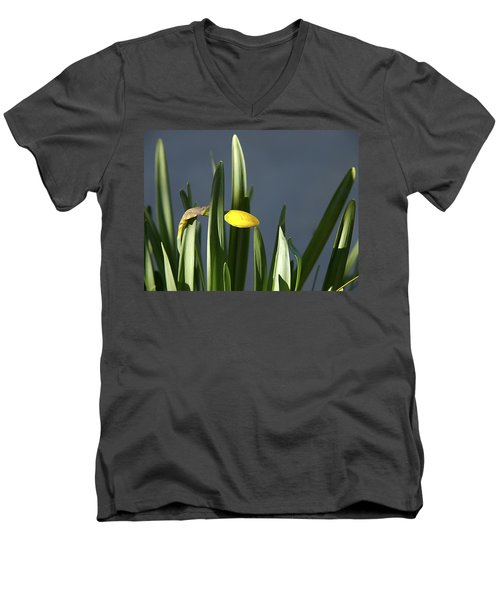 Men's V-Neck T-Shirt featuring the photograph 1st Daff by Joe Schofield