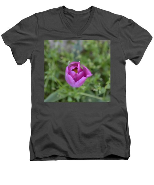 1st Spring Men's V-Neck T-Shirt