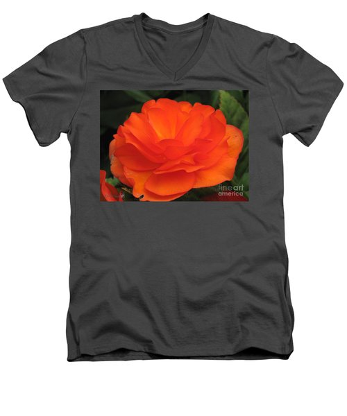 Men's V-Neck T-Shirt featuring the photograph Begonia Named Nonstop Apricot by J McCombie