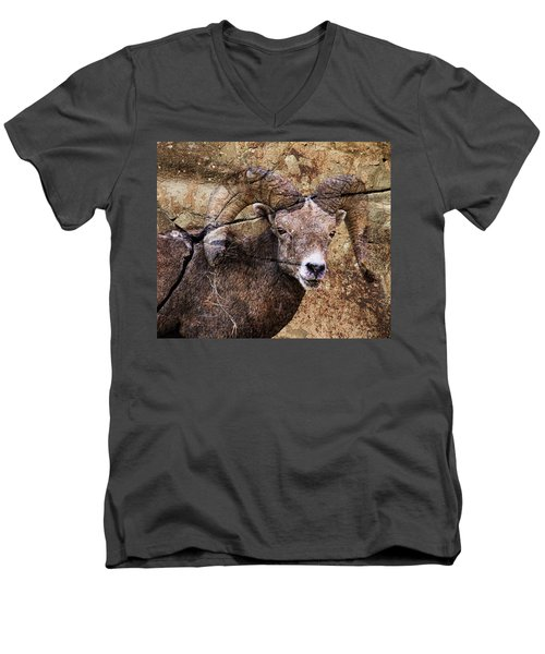 Bighorn Rock Men's V-Neck T-Shirt