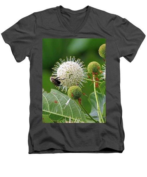 Bumbler Men's V-Neck T-Shirt