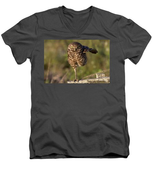 Burrowing Owl Photograph Men's V-Neck T-Shirt