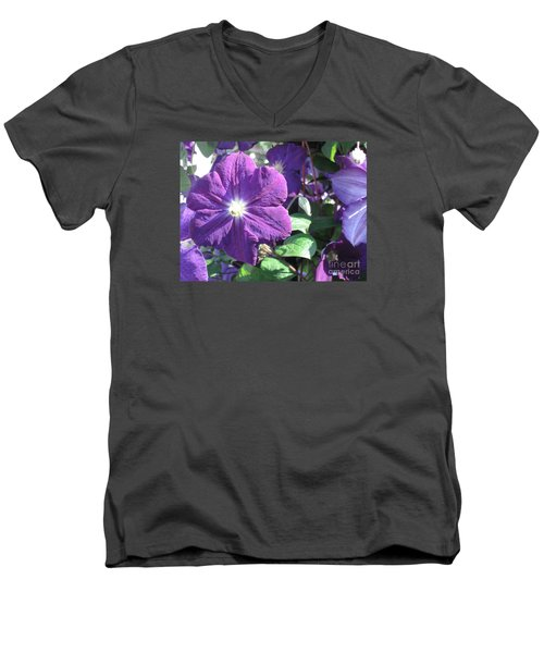 Clematis With Blazing Center Men's V-Neck T-Shirt