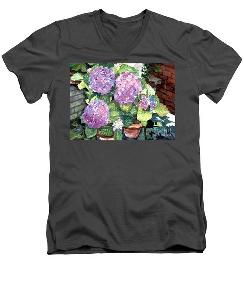 Corner Garden Men's V-Neck T-Shirt