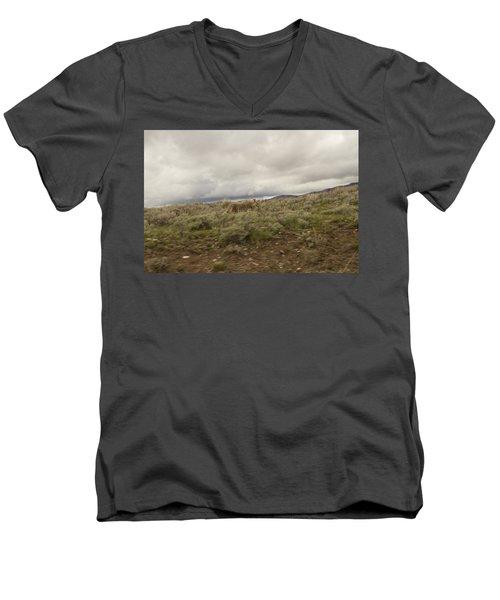 Coyote Men's V-Neck T-Shirt