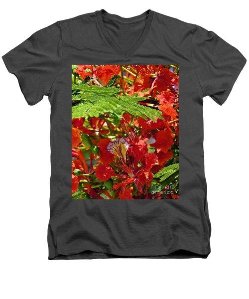 Men's V-Neck T-Shirt featuring the photograph Flamboyan by Lilliana Mendez
