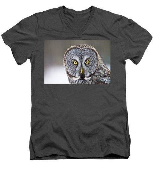 Great Gray Owl Portrait Men's V-Neck T-Shirt