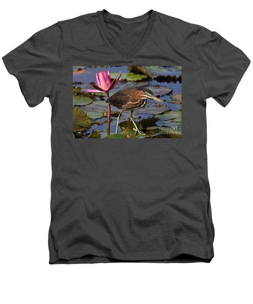 Green Heron Photo Men's V-Neck T-Shirt
