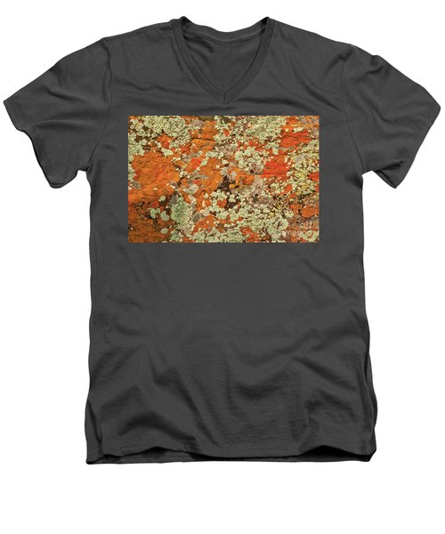 Men's V-Neck T-Shirt featuring the photograph Lichen Abstract by Mae Wertz