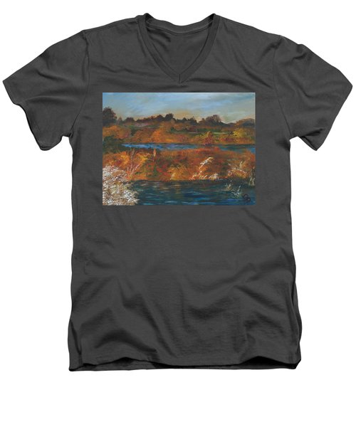 Mendota Slough Men's V-Neck T-Shirt