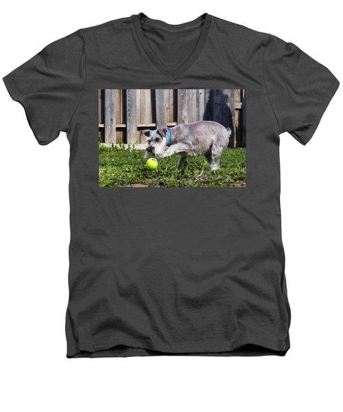 Miniature Schnauzer Men's V-Neck T-Shirt