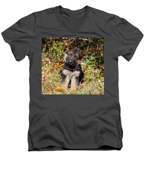 Pretty Puppy Men's V-Neck T-Shirt