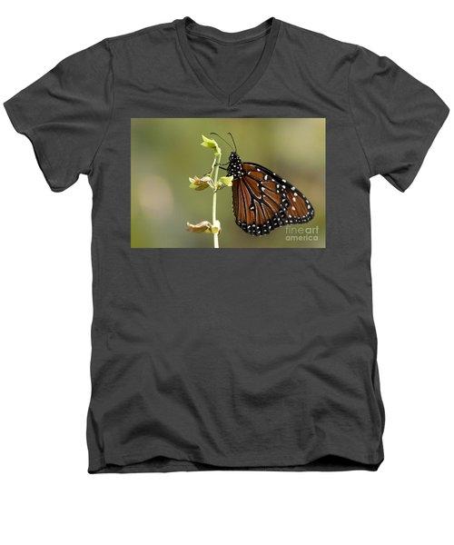 Men's V-Neck T-Shirt featuring the photograph Queen Butterfly by Meg Rousher