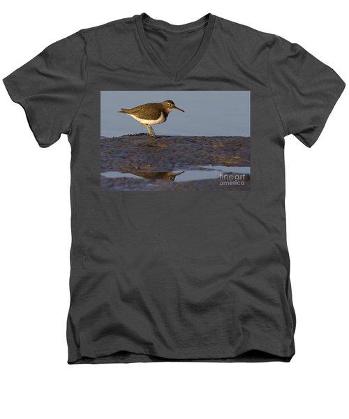 Spotted Sandpiper Reflection Men's V-Neck T-Shirt