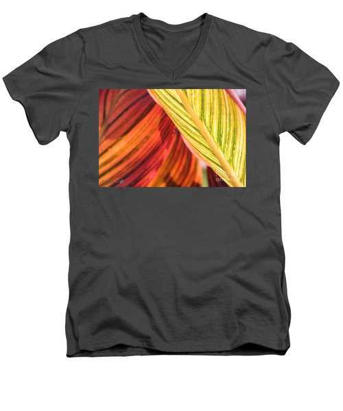 Canna Lily Named Durban Men's V-Neck T-Shirt by J McCombie