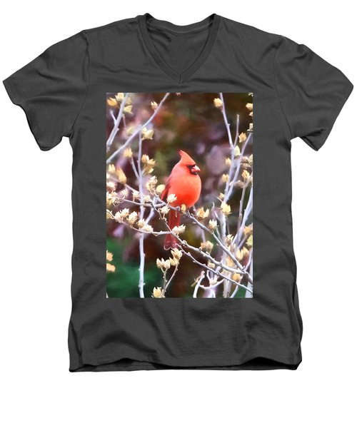 Cardinal Men's V-Neck T-Shirt by John Freidenberg