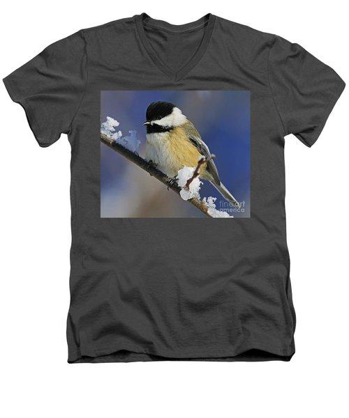 Winter Chickadee... Men's V-Neck T-Shirt