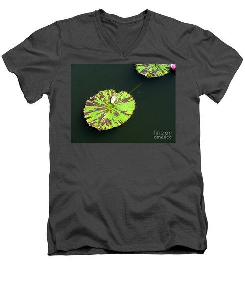 3 Men's V-Neck T-Shirt