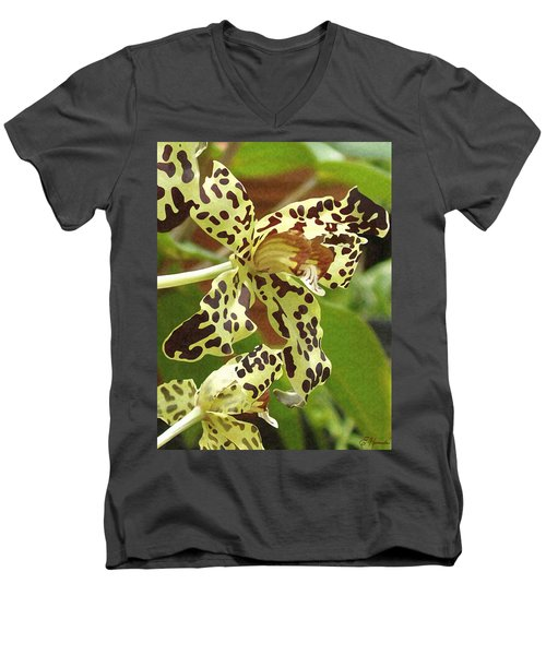 Leopard Orchids Men's V-Neck T-Shirt by Ellen Henneke