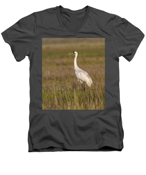 Whooping Crane Men's V-Neck T-Shirt