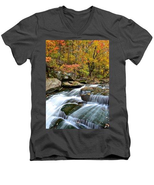 Berea Falls Men's V-Neck T-Shirt