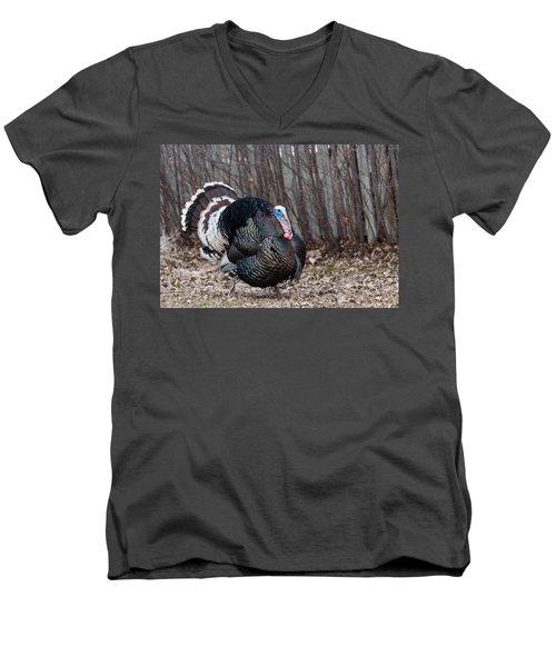 Strutting Turkey Men's V-Neck T-Shirt