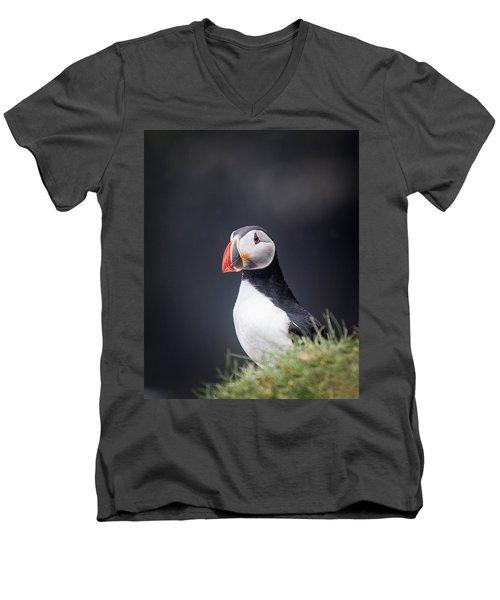 Atlantic Puffin Fratercula Arctica Men's V-Neck T-Shirt