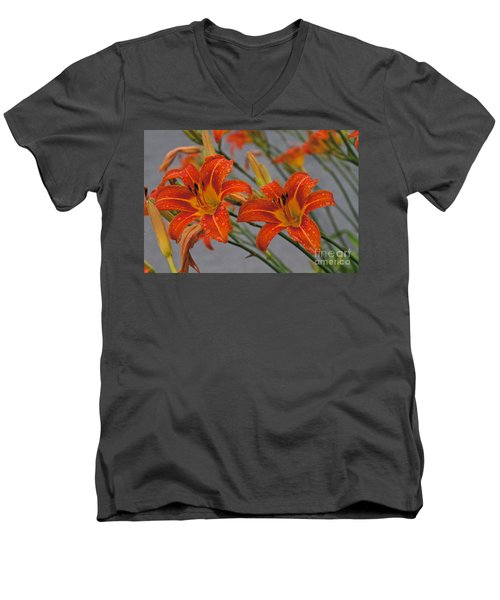 Day Lilly Men's V-Neck T-Shirt by William Norton