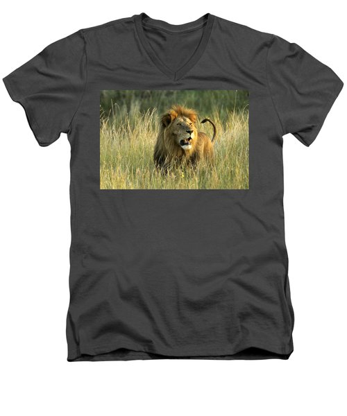 King Of The Savanna Men's V-Neck T-Shirt