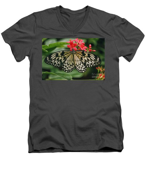 Paper Kite Butterfly Men's V-Neck T-Shirt