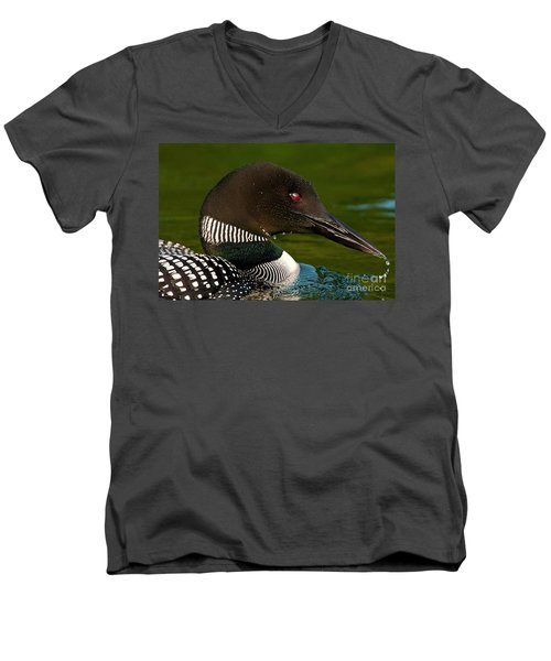 Common Loon Men's V-Neck T-Shirt