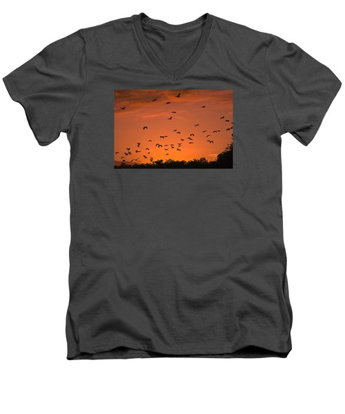 Birds At Sunset Men's V-Neck T-Shirt by Sally Weigand