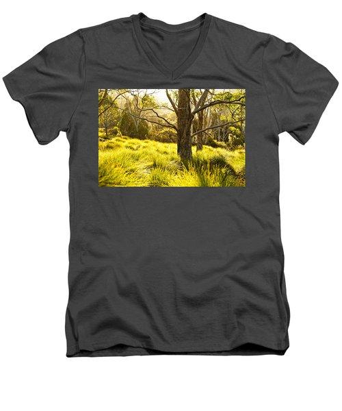 A Bare Tree Men's V-Neck T-Shirt