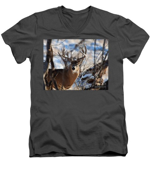 A Buck In The Bush Men's V-Neck T-Shirt