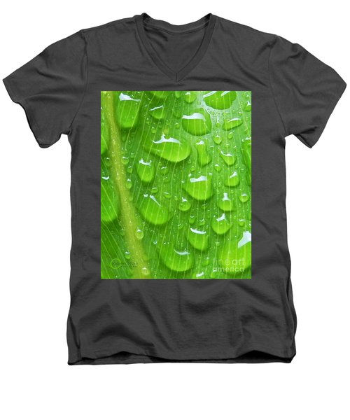 Men's V-Neck T-Shirt featuring the photograph A Cleansing Morning Rain by Robert ONeil