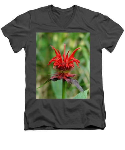A Flowering Red Castle Beauty Men's V-Neck T-Shirt