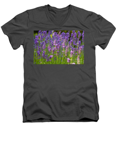 A Friendly Summer Day Men's V-Neck T-Shirt by Juergen Klust