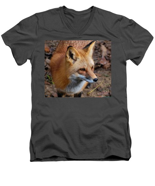 A Little Red Fox Men's V-Neck T-Shirt