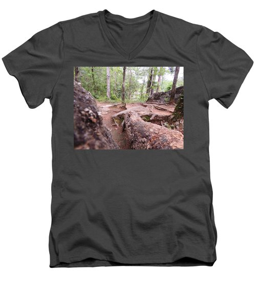 A New View From The Woods Men's V-Neck T-Shirt