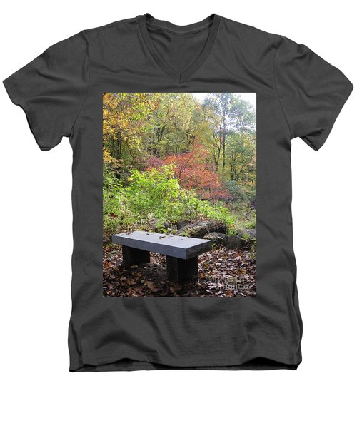 A Place To Think II Men's V-Neck T-Shirt