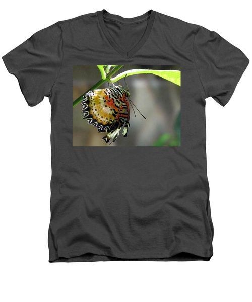 Men's V-Neck T-Shirt featuring the photograph A Real Beauty by Jennifer Wheatley Wolf
