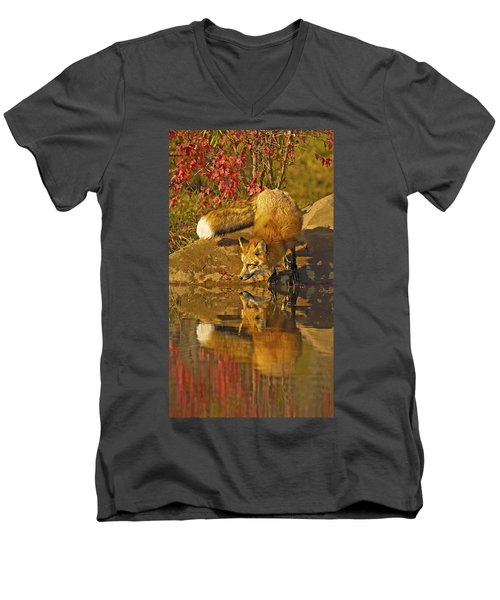 A Real Fox Men's V-Neck T-Shirt