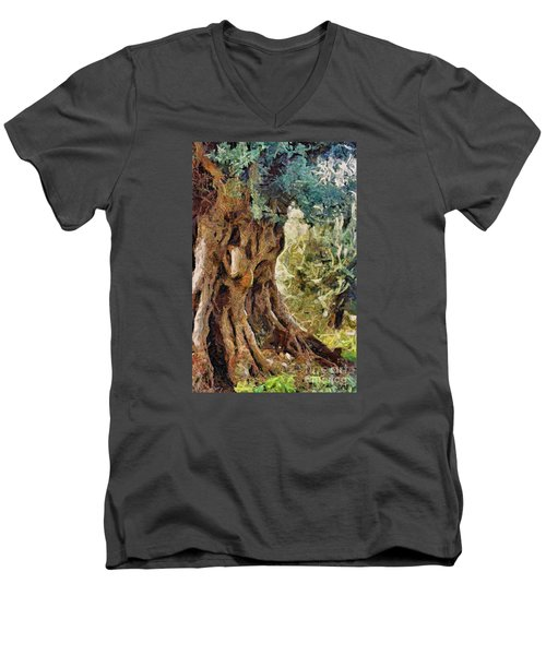 A Really Old Olive Tree Men's V-Neck T-Shirt