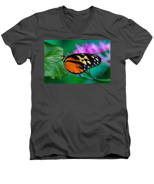A Splash Of Colour Men's V-Neck T-Shirt