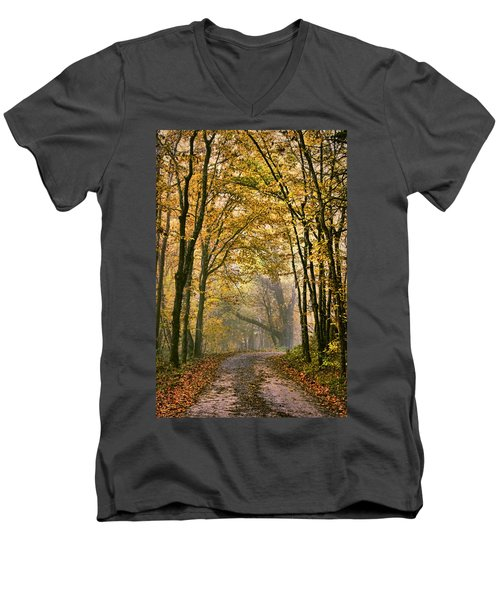 A Touch Of Gold Men's V-Neck T-Shirt