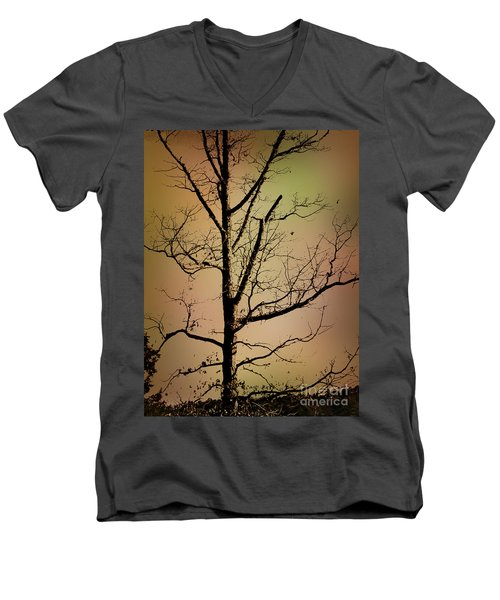 A Tree By The Lake Men's V-Neck T-Shirt