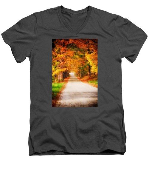 A Walk Along The Golden Path Men's V-Neck T-Shirt