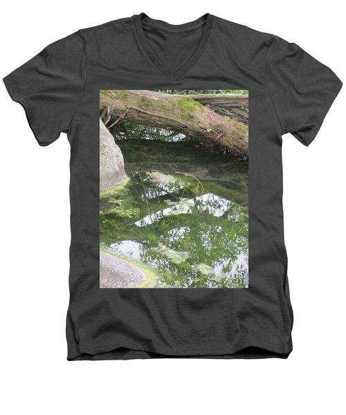 Abstract Nature 3 Men's V-Neck T-Shirt